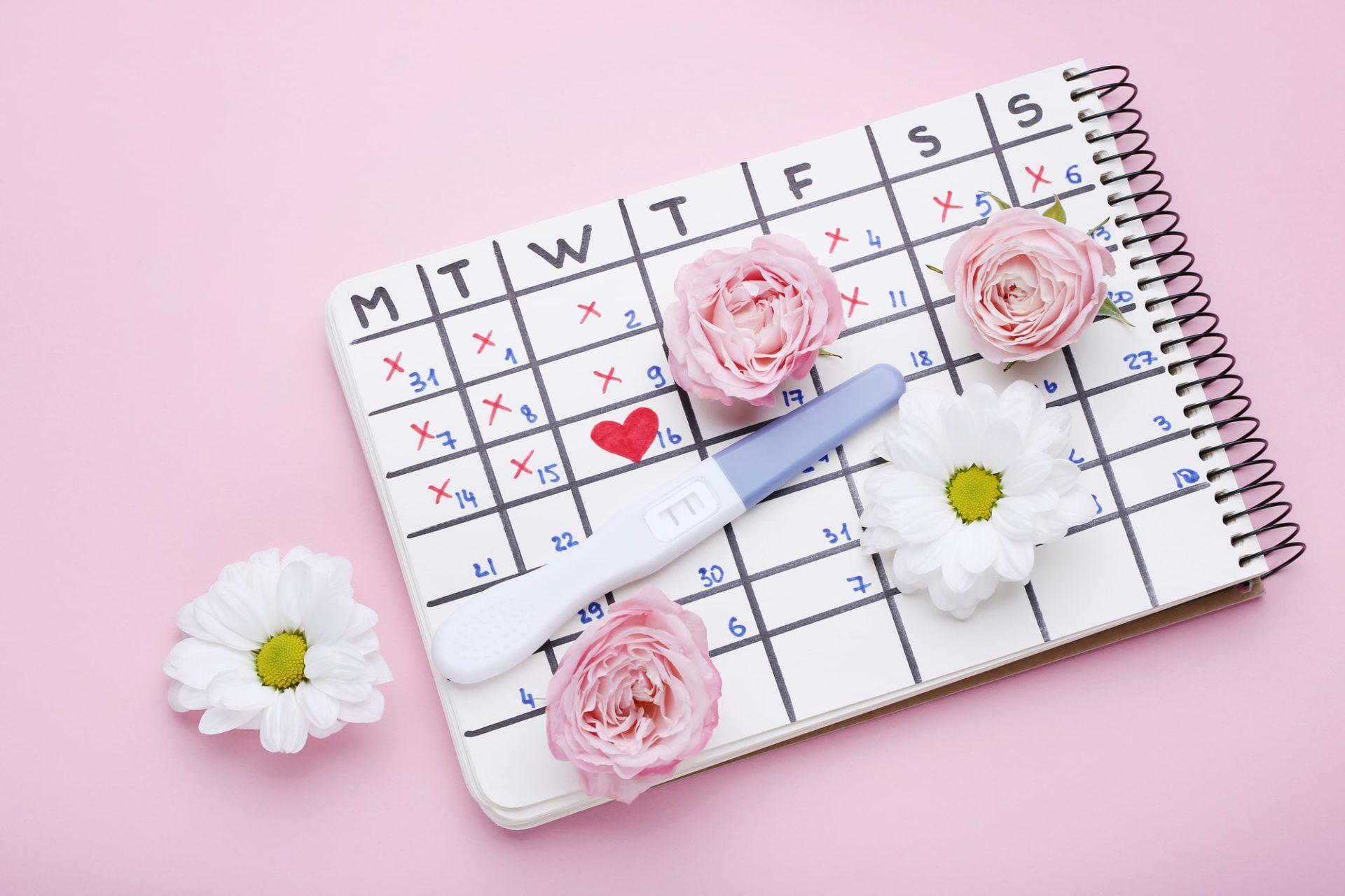 Kalendarz owulacji